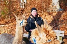 Unterwegs mit den Hügelland-Alpakas