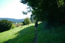 Altmühltal-Panoramaweg von Meihern nach Jachenhausen