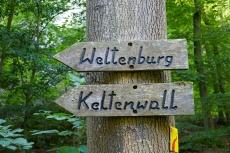 Altmühltal-Panoramaweg von Prunn nach Kelheim - Keltenwall