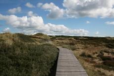 Amrum: Bohlenweg durch die Dünen