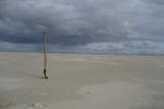 Amrum: Stillleben im Sand