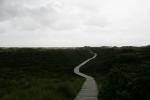Amrum: Endloser Bohlenweg