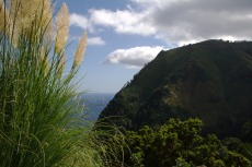 Sao Miguel - Ostküste