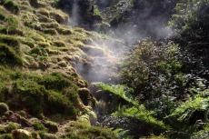 Heisser Dampf aus der Erde