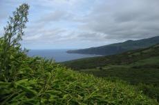Faial - Nordküste