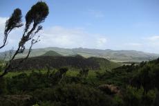 Lavafelder von Misterios Negros
