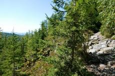 Bayerischer Wald   Über die Himmelsleiter auf den Lusen