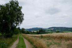 Diemelsteig - Von Stormbruch nach Heringhausen