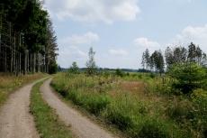 Diemelsteig - Von Wirmighausen nach Schweinsbühl - Pfad der Stille