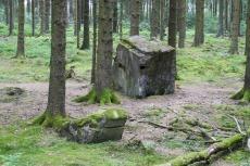 NaturWanderPark delux: Moore-Pfad Schneifel - Überreste des Westwalls