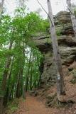 NaturWanderPark delux: Felsenweg - Berdorf