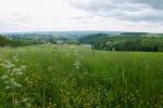 NaturWanderPark delux: Moore-Pfad Schneifel