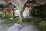 NaturWanderPark delux: Felsenweg - Berdorf - Hohllay-Höhle