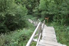 Nationalpark Eifel – Rund um Vogelsang