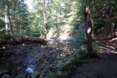 Hohes Venn – Rund um Ternell