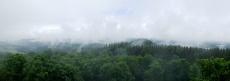 Eifelsteig #10: Von Gerolstein nach Neroth - Aussichtspunkt Dietzenley