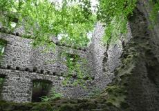 Eifelsteig #11: Von Neroth bis Schalkenmehren - Burgruine Freudenkoppe