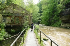 Malerweg #1 - Im Liebethaler Grund
