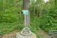 Malerweg #1 - Koordinatenstein 51° Nord 14° Ost