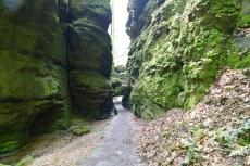 Malerweg #1 - Felsentor im Uttewalder Grund
