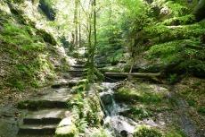 Malerweg #3 - Aufstieg nach Hohnstein