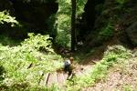 Malerweg #3 - Abstieg hinter der Brand-Baude