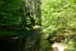 Malerweg #5 - Im Kirnitzschtal
