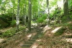 Malerweg #5 - Abstieg nach Schmilka