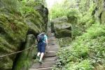 Malerweg #7 - Hoch zum Pfaffenstein