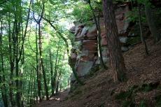 Felsenland Sagenweg - Auf dem Weg zum Jungfernsprung