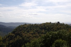 Felsenland Sagenweg - Die Hohenburg in Sichtweite