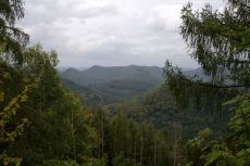 Felsenland Sagenweg - Noch mehr Wald...