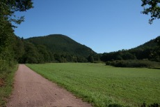 Felsenland Sagenweg - Kurz hinter Fischbach