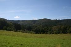 Felsenland Sagenweg - Und nochmal Wald...