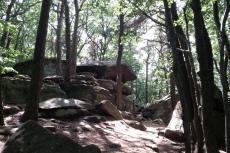 Pfälzer-Höhen-Runde - Felsenmeer