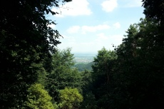 Pfälzer-Höhen-Runde