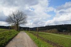 Zwischen Dhünn und Dabringhausen
