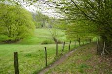 Rund um Haßlinghausen