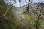 Bergische Wanderungen: Trampelpfade