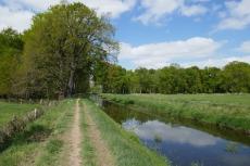Hohe-Mark-Steig #11 – Flussläufer
