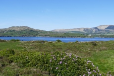 Irland – Beara Way – Bere Island