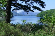 Irland – Killarney-Nationalpark