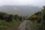 Irland – Beara Way – Von Glengarriff nach Adrigole