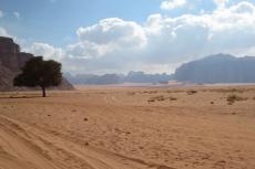 Jordanien – Ab in die Wüste, ab ins Wadi Rum…