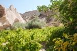 Kappadokien: Wein im Roten Tal
