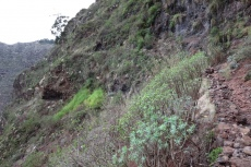 La Gomera: Steil geht's bergan