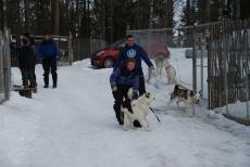 Lapplands Drag – Husky Expedition: Die Hunde werden verladen