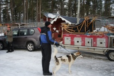 Lapplands Drag – Husky Expedition: Wo ist noch Platz?