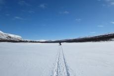 Lapplands Drag – Husky Expedition: Nur noch unsere Spur