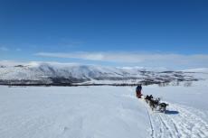 Lapplands Drag – Husky Expedition: Aufstieg aufs Hochplateau